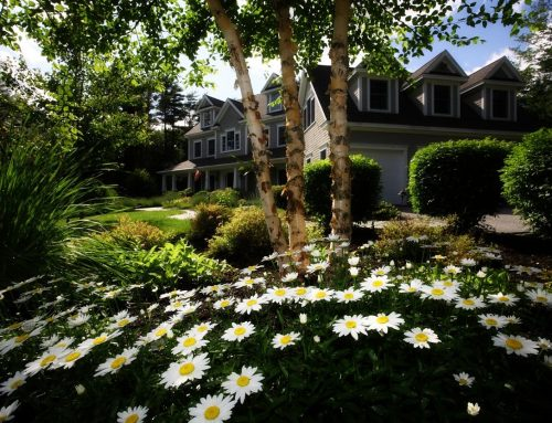 Curb Appeal Tips To Sell Your Home